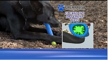 "<strong>Chew Brush for Dogs</strong>"" class=""wp-image-373381″><figcaption>Chew Brush is available only at the official website get<strong>Chew Brush for Dogs</strong>.com. Price is <br><img class="